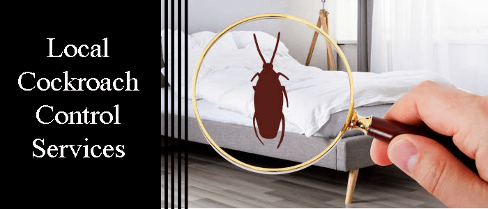 Local Cockroach Control Services